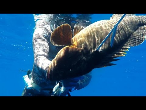 No time for caution for the grouper - 42m  (spearfishing - pescasub - ψαροντούφεκο)